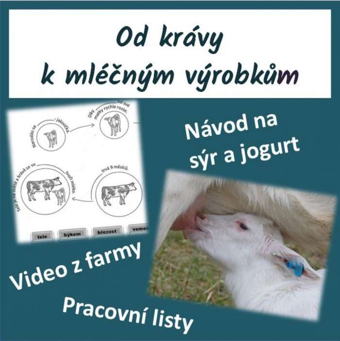 Obrázek - 1